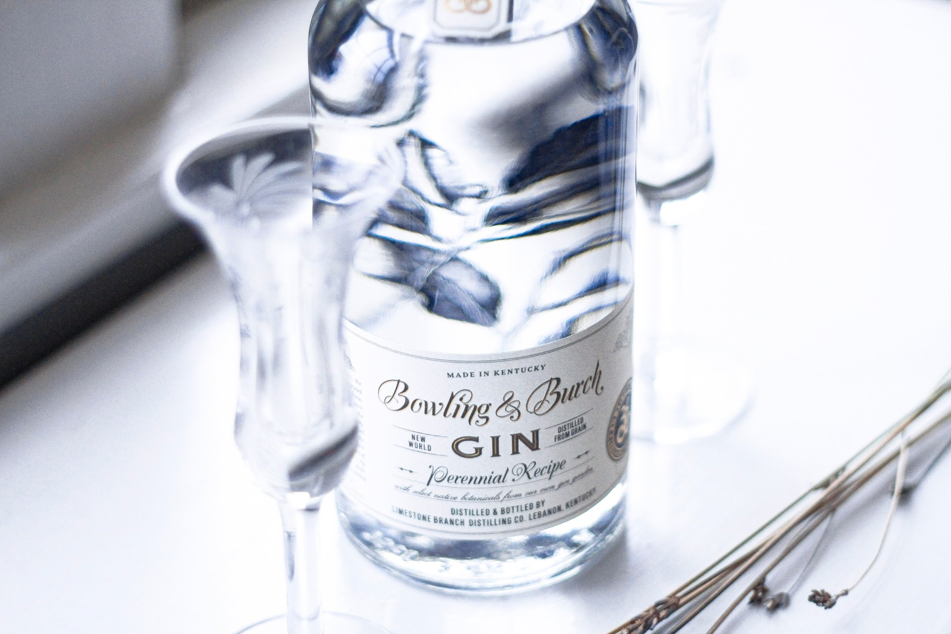 How to Host a Gin Tasting