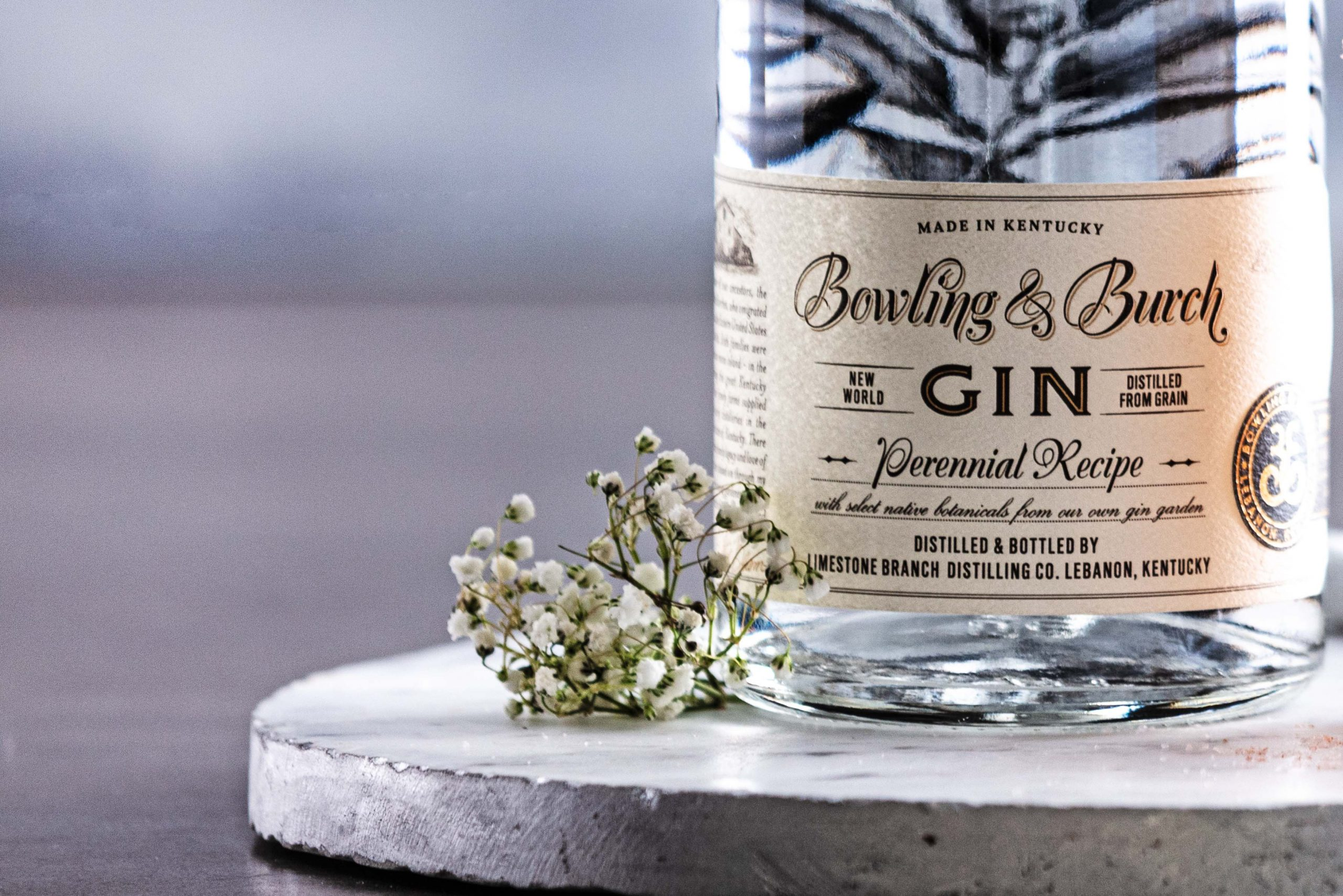 Your Guide to 5 Essential Gin Styles