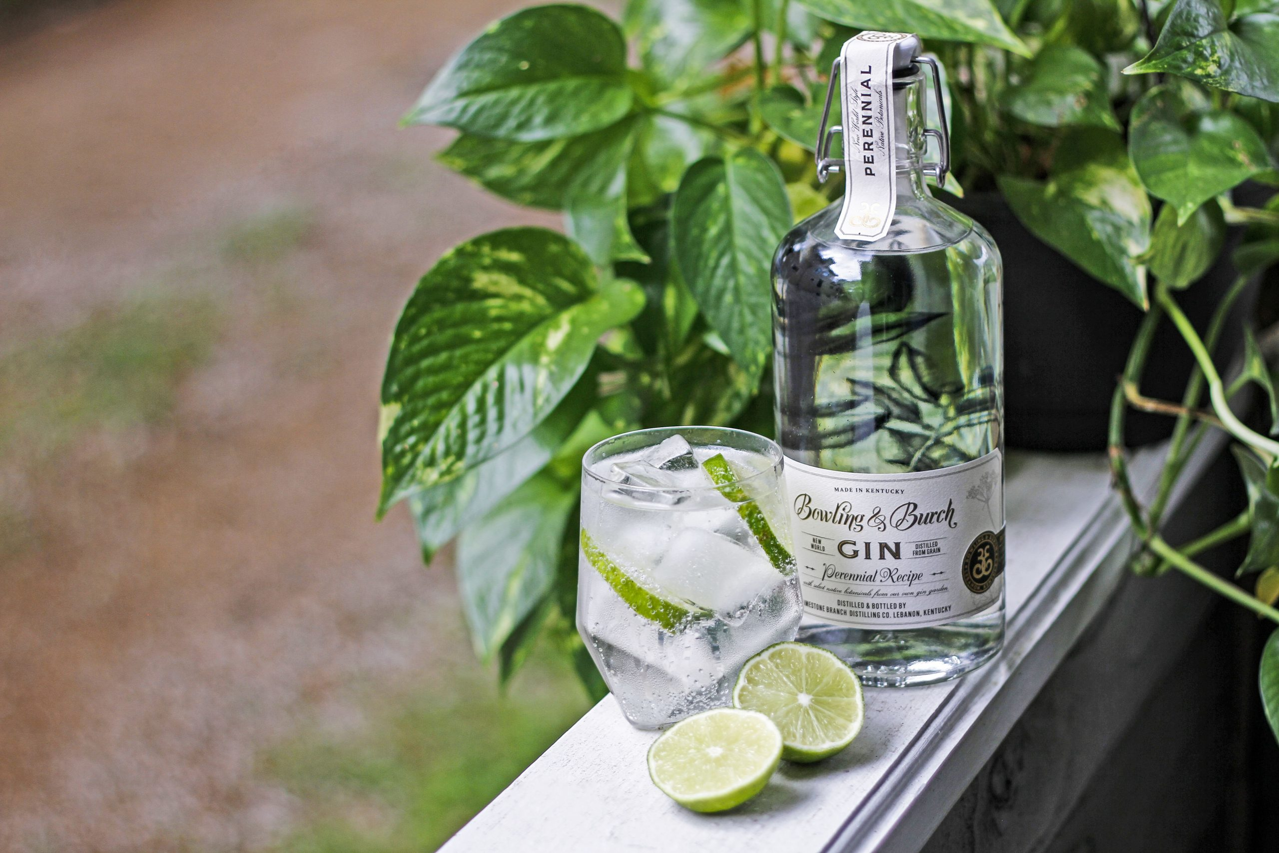 The History of the Gin & Tonic – And How to Make Different Variations