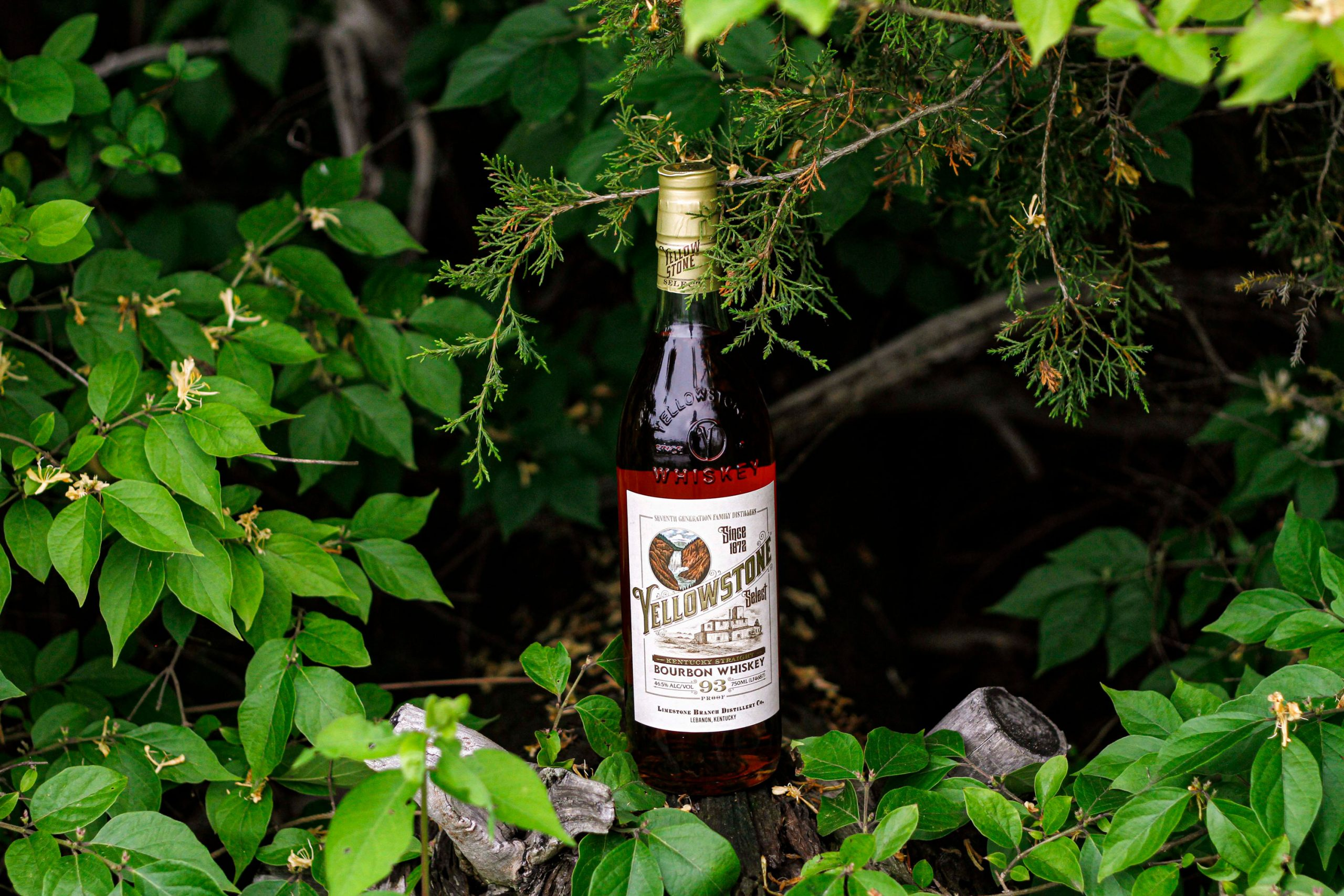Bourbon for All: Yellowstone Bourbon Cocktails with a Touch of Adventure